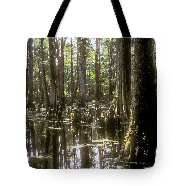 Natchez Trace Wetlands Tote Bag by Bob Phillips