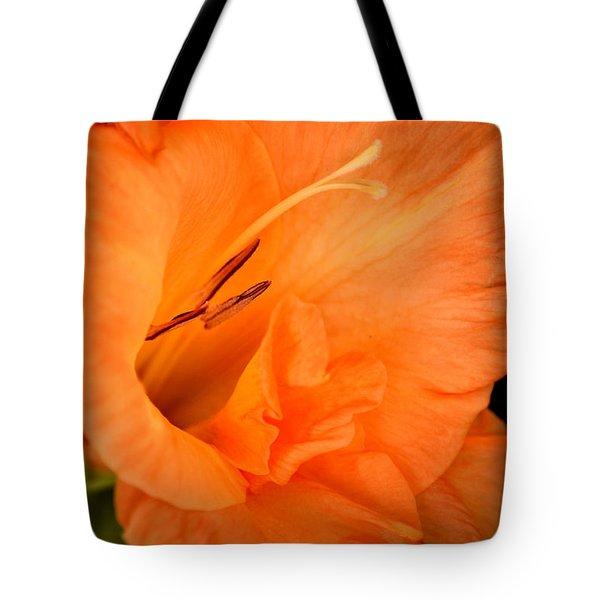 Natural Grace Tote Bag by Deb Halloran