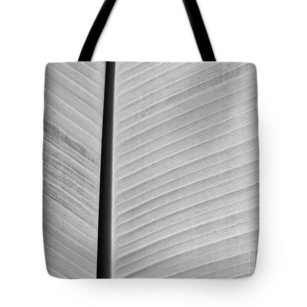 Natural Lines Tote Bag by Sabrina L Ryan