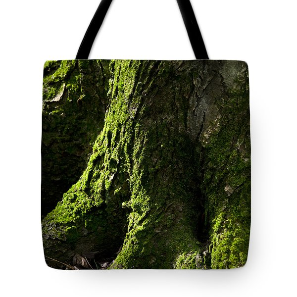 Nature Abstract Tree Trunk Tote Bag by Christina Rollo