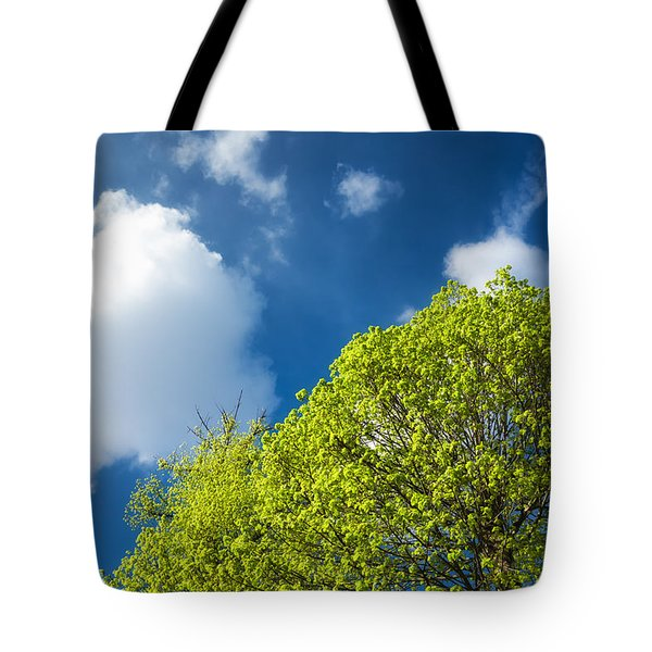 Nature In Spring - Bright Green Tree And Blue Sky Tote Bag by Matthias Hauser