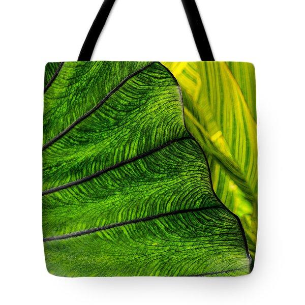 Nature's Artistry Tote Bag by Jordan Blackstone