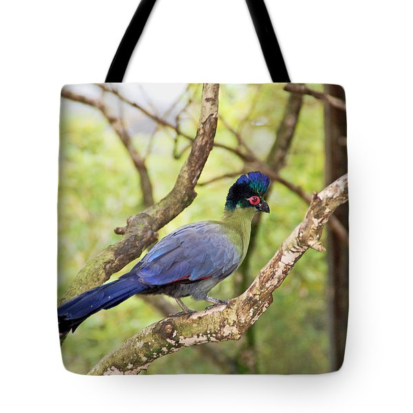 Natures Beauty Tote Bag by Aimee L Maher Photography and Art