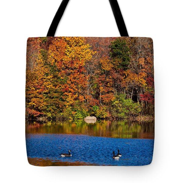 Natures Colorful Autumn Tote Bag by Karol Livote