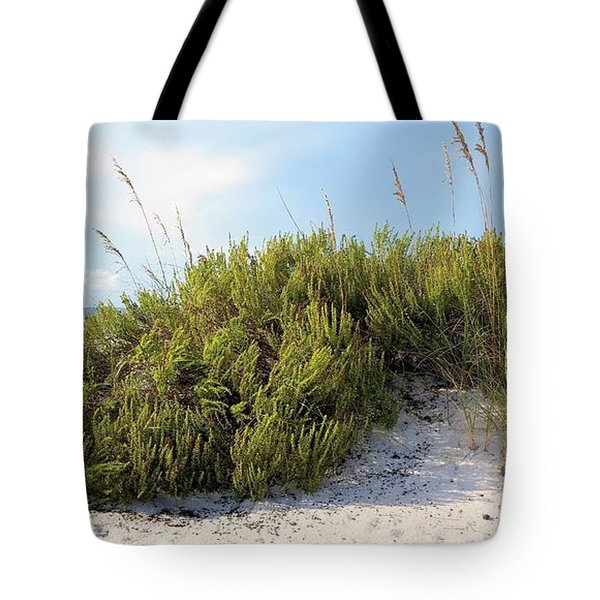 Navarre Florida Tote Bag by JC Findley