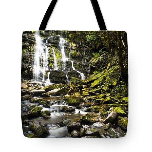 Nelson Falls Tasmania Tote Bag by Tim Hester