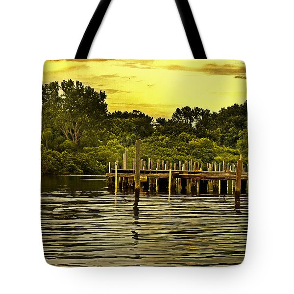Neshaminy State Park Tote Bag by Tom Gari Gallery-Three-Photography