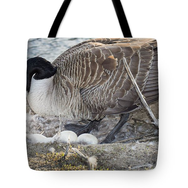 Nester Tote Bag by Bill Pevlor