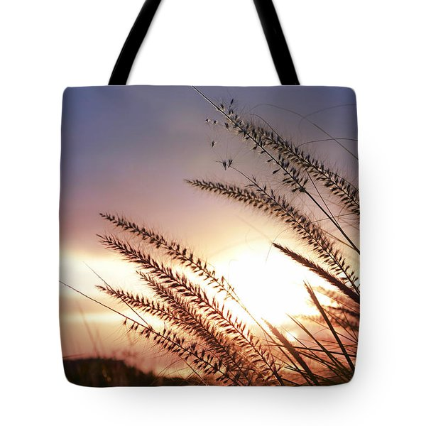 new day Tote Bag by Laura  Fasulo