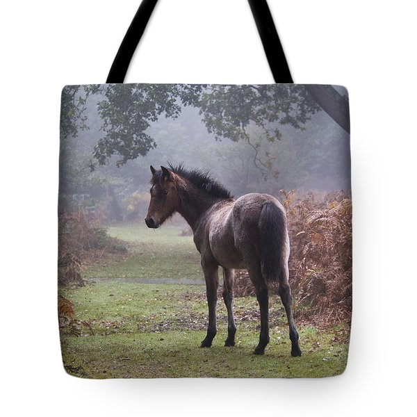 New Forest Pony Tote Bag by Dave Pressland FLPA