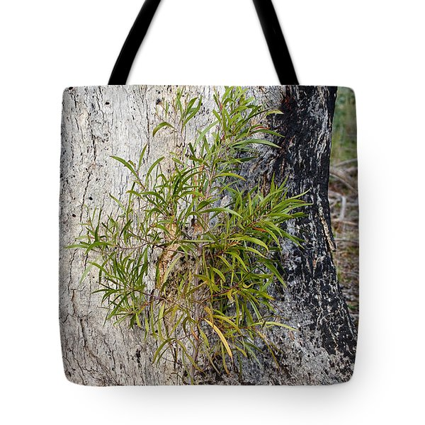 New Growth Tote Bag by Steven Ralser