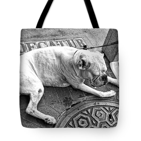 Newsworthy Dog In French Quarter Black And White Tote Bag by Kathleen K Parker