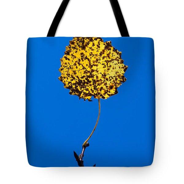 Nightlight Tote Bag by Alexander Senin
