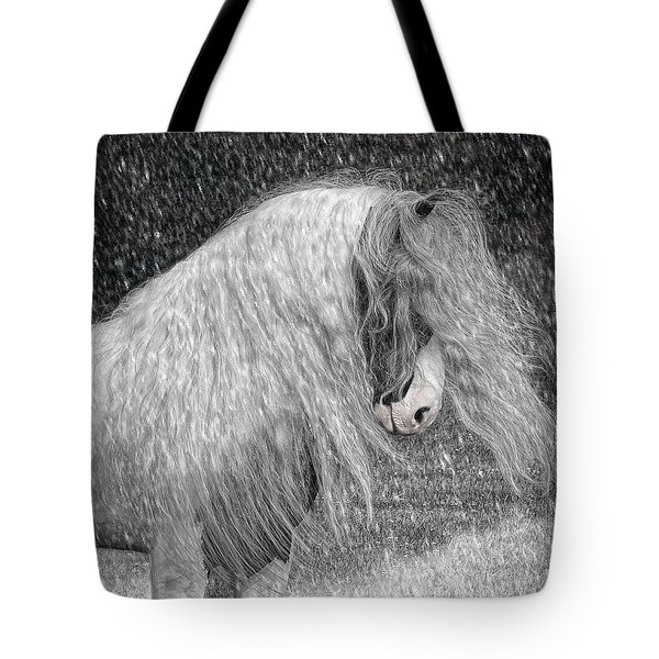 Nor Easter Tote Bag by Fran J Scott