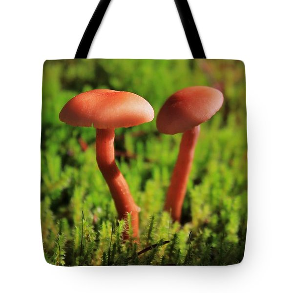 North Cascades Mushrooms Tote Bag by Benjamin Yeager