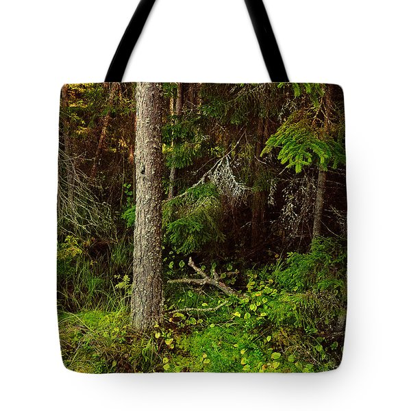 Northern Forest 1 Tote Bag by Jenny Rainbow