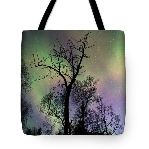 Northern Lights Cottonwood Tote Bag by Ron Day
