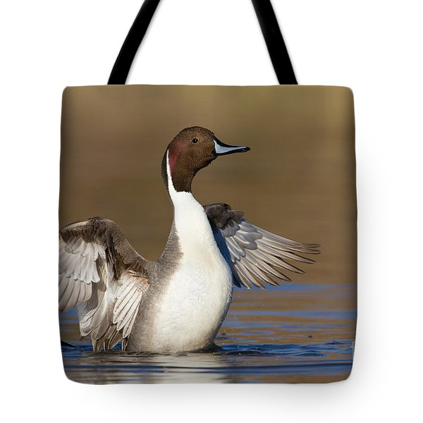 Northern Pintail Wing Flap Tote Bag by Bryan Keil