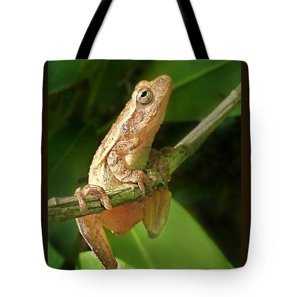 Northern Spring Peeper Tote Bag by William Tanneberger