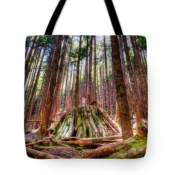 Northwest Old Growth Tote Bag by Spencer McDonald