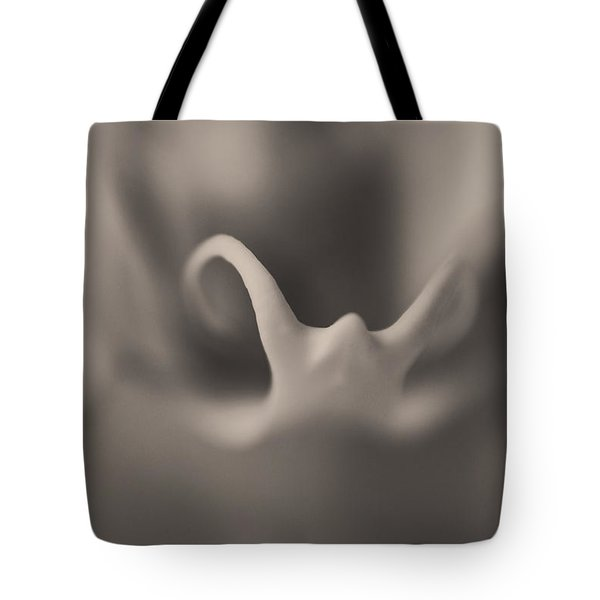Nothingness Tote Bag by Laurie Search
