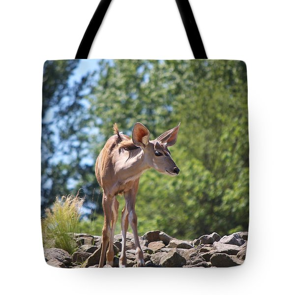 Nyala Tote Bag by Angela Doelling AD DESIGN Photo and PhotoArt