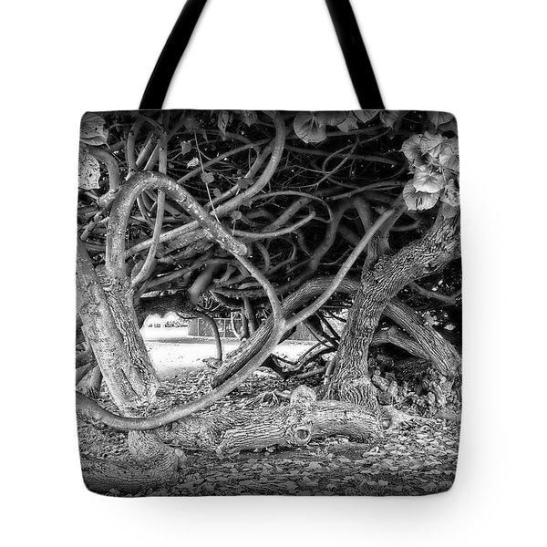 OAHU GROUND VINES - HAWAII Tote Bag by Daniel Hagerman