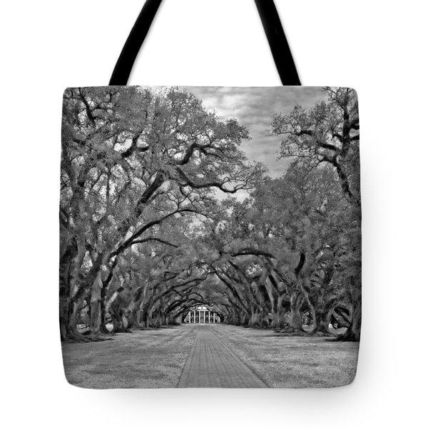 Oak Alley 3 monochrome Tote Bag by Steve Harrington