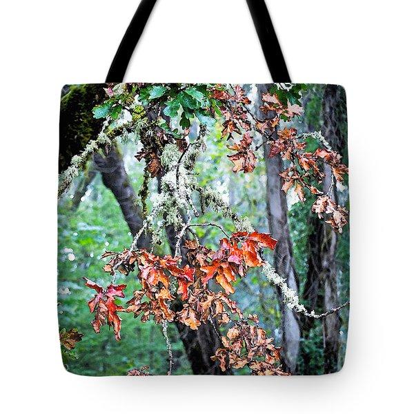 Oak Stories Tote Bag by Gwyn Newcombe