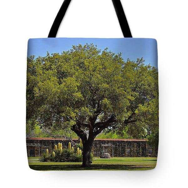 Oak Tree Mission San Jose Tx Tote Bag by Christine Till