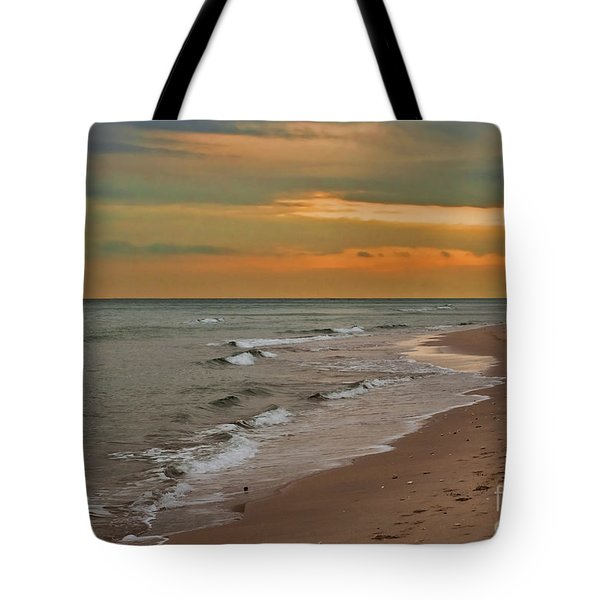 Oblivious Tote Bag by Barbara McMahon
