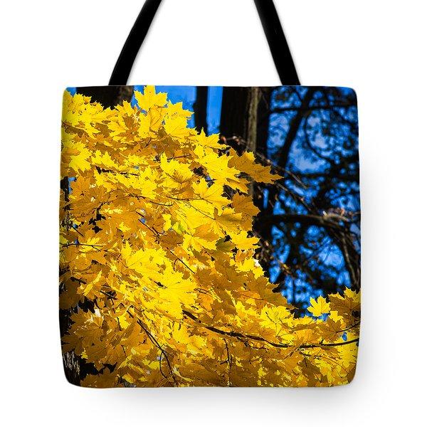 October Blues 10 - Square Tote Bag by Alexander Senin