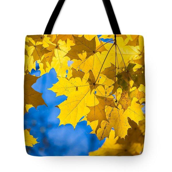 October Blues 8 - Square Tote Bag by Alexander Senin