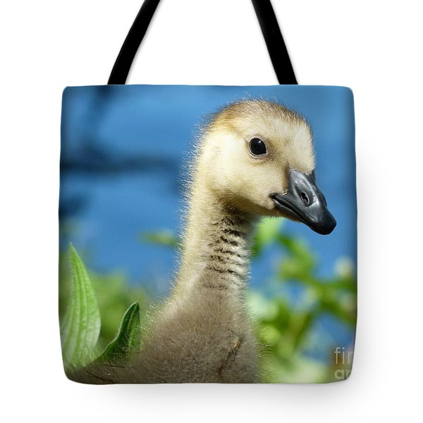 Oh Hi Tote Bag by Jane Ford