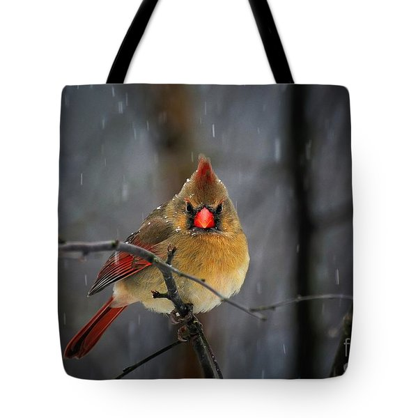 Oh No Not Again Tote Bag by Lois Bryan
