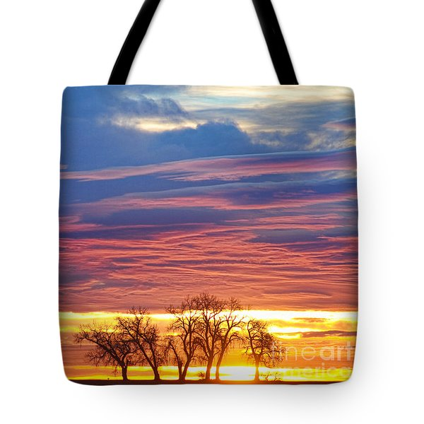 Oh What A Beautiful Morning Tote Bag by James BO  Insogna