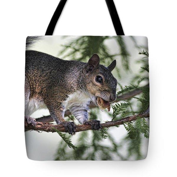Ok You Caught Me Tote Bag by Deborah Benoit