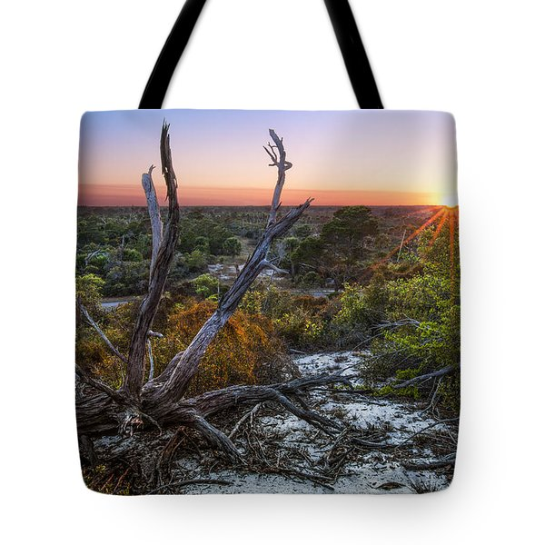 Old Florida Tote Bag by Debra and Dave Vanderlaan