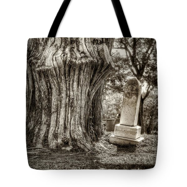 Old Friends Tote Bag by Scott Norris