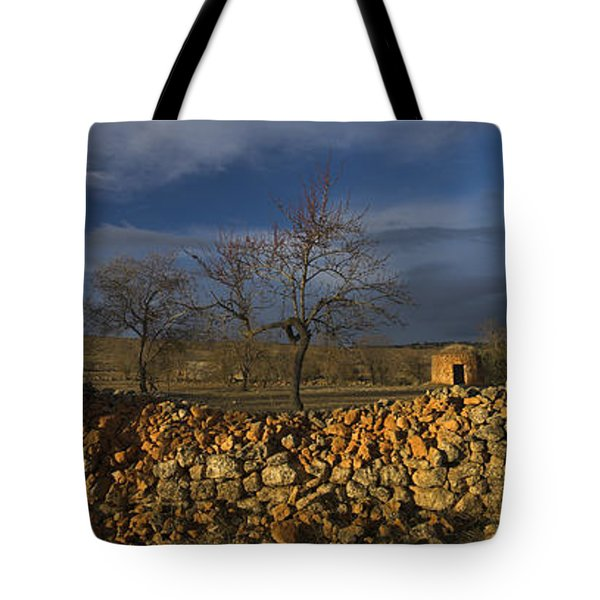 Old Shepherd's Hut Tote Bag by Guido Montanes Castillo