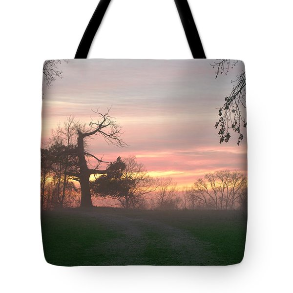 Old Tree At Sunset Tote Bag by Brian Harig