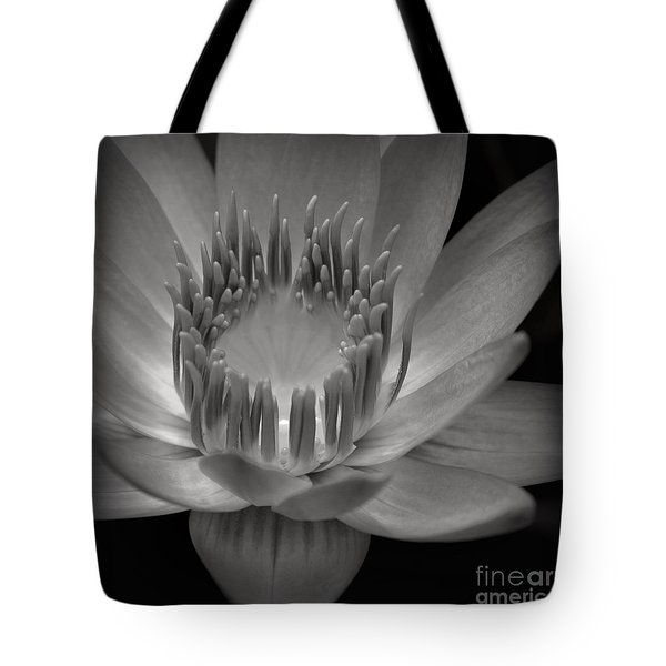 Om Mani Padme Hum Hail To The Jewel In The Lotus Tote Bag by Sharon Mau