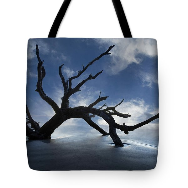 On A Misty Morning Tote Bag by Debra and Dave Vanderlaan