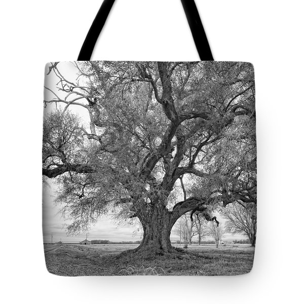 On the Delta monochrome Tote Bag by Steve Harrington