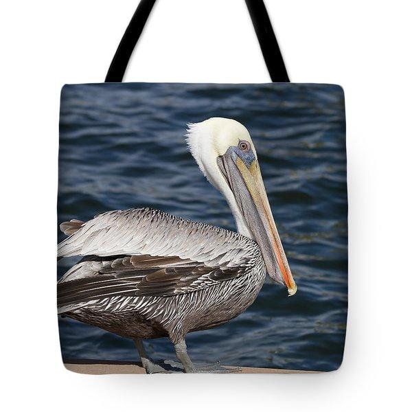 On The Edge - Brown Pelican Tote Bag by Kim Hojnacki