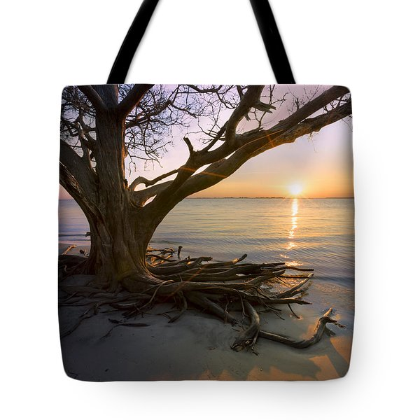 On The Edge Of The Surf Tote Bag by Debra and Dave Vanderlaan