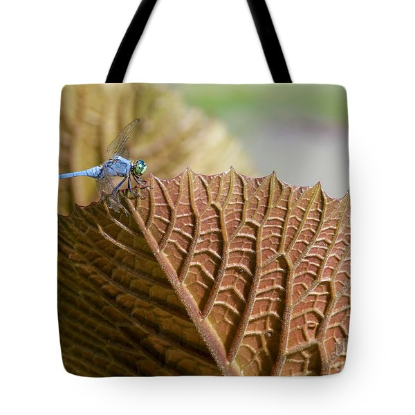 On The Edge Tote Bag by Sabrina L Ryan