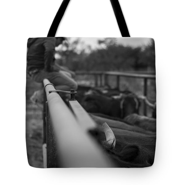 On The Fence Tote Bag by Amber Kresge