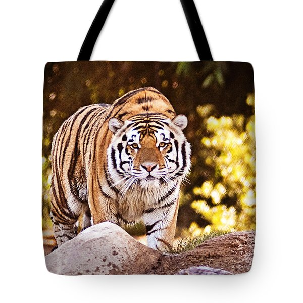 On the Prowl Tote Bag by Scott Pellegrin
