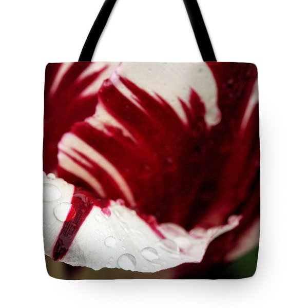 On the Tip of my Tongue  Tote Bag by JC Findley